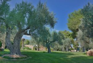 Hotel degli Ulivi - Un angolo di paradiso nel cuore della Basilicata